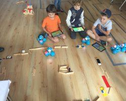 Sommercamp: Dash, der smarte Sonnenschein!